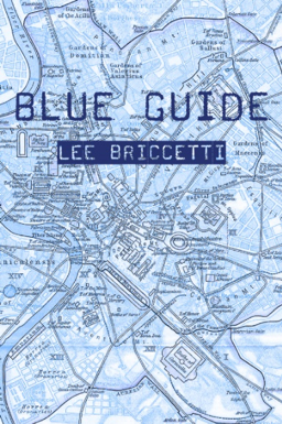 Blue Guide by Lee Briccetti