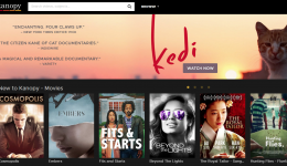 Kanopy Streaming Media Movie Selection - Highlighting Kedi