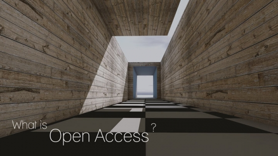 what is open access on checkered path sunlit corridor
