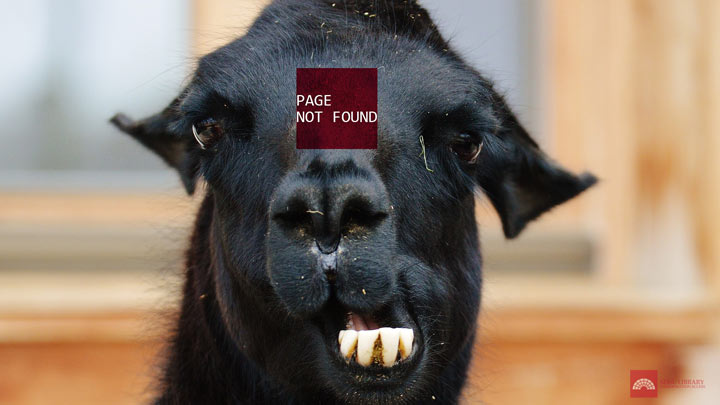 page not found llama